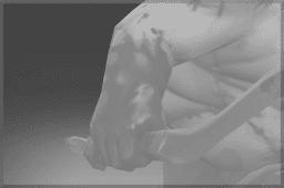 Pudge's Bare Arm
